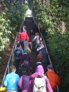 2014_2_Stairway Walks Day_Olmseated Vision (19)