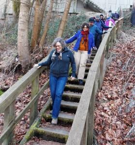 2014_2_Stairway Walks Day_Maple Leaf (6)
