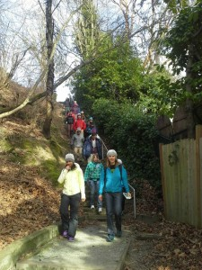 Mt. Baker Stairway Walks Day