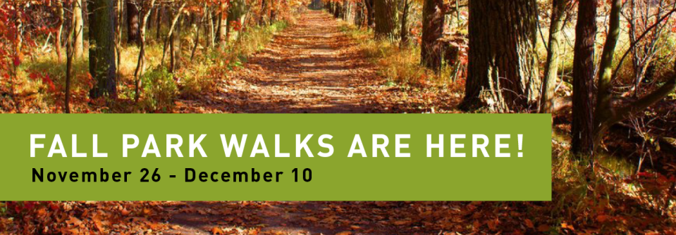 feet-first-web-banner-fall-walks_larger-size